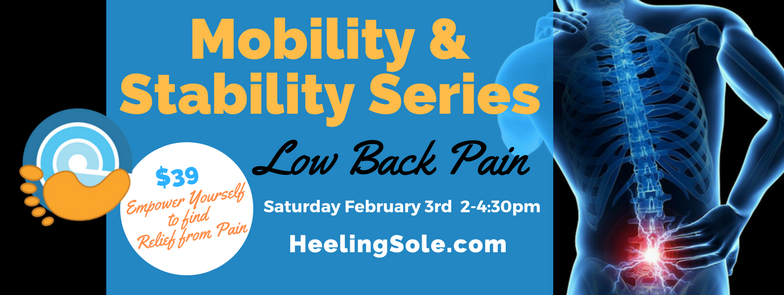 low-back-pain-mobility-stability-class